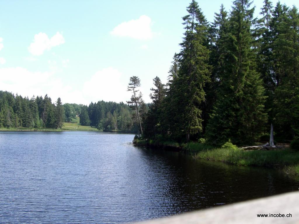 ...der See...