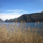 Am Alpnacher See entlang