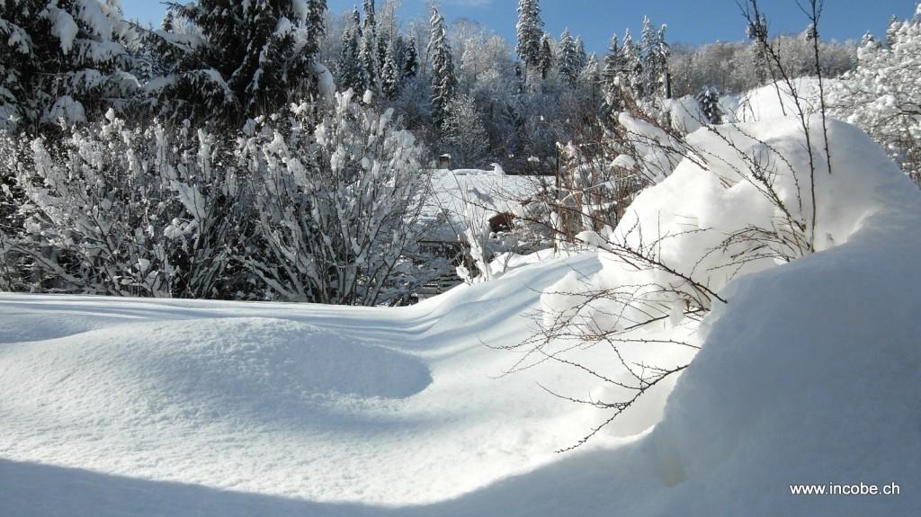 Schnee und nochmals Schnee