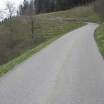 Aufstieg auf den Rainsberg, geht wohl mit den Flyer schon gäbiger...