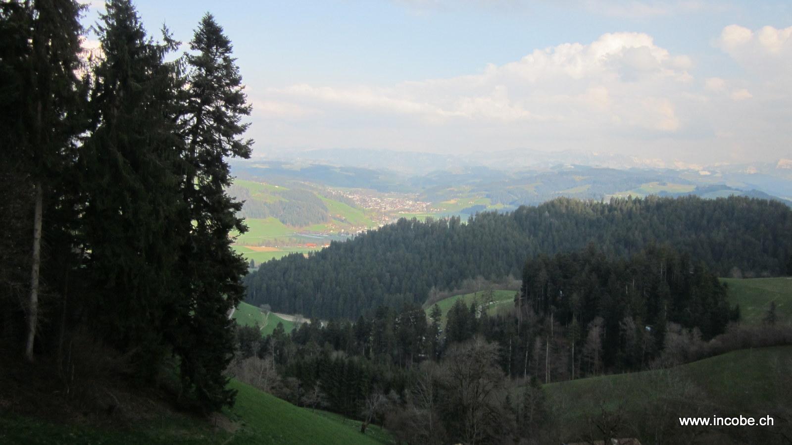 Blick nach Langnau von der Moosegg